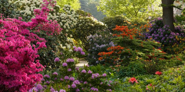 The European Route of Historic Gardens celebrates its General Assembly